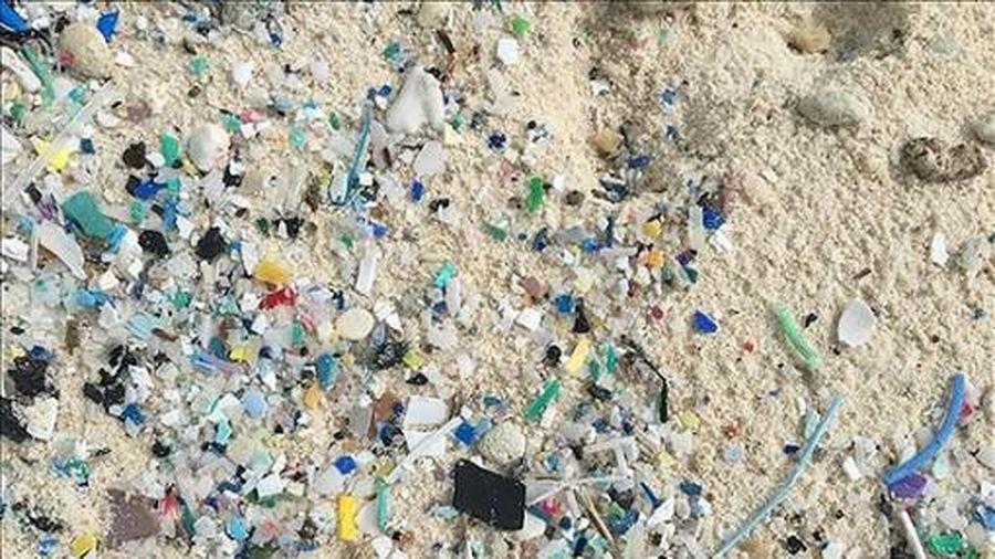 Úc phát triển công nghệ tái chế rác nhựa trở lại thành dầu