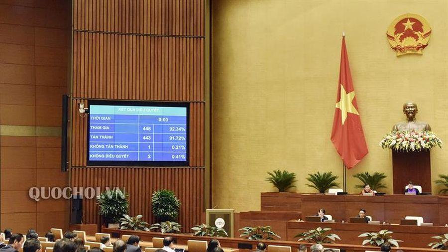 Quốc hội thông qua dự án Luật Dân quân tự vệ (sửa đổi) với số phiếu tán thành chiếm 91,72%