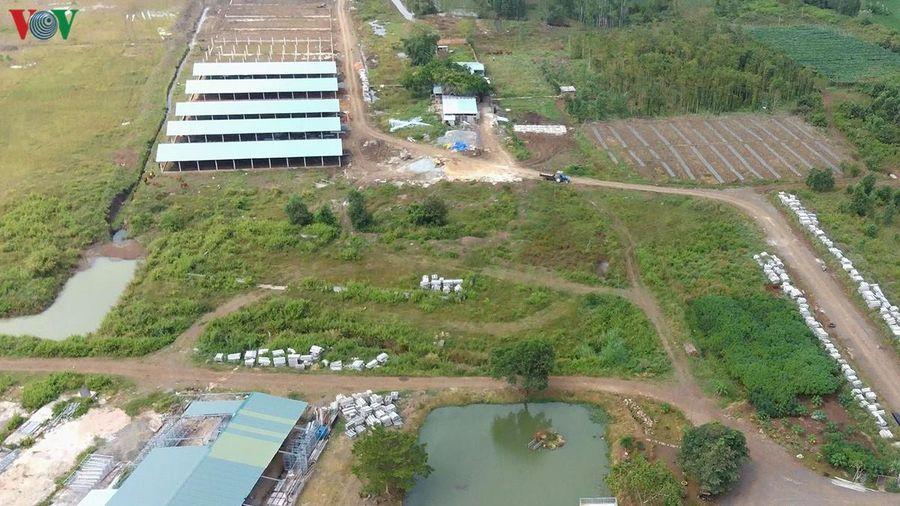 Tỉnh Bà Rịa–Vũng Tàu nên xem lại vị trí cho xây dựng trại heo Hưng Việt