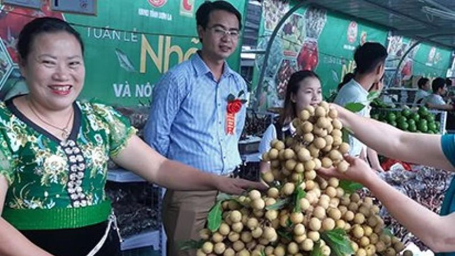 Xúc tiến tiêu thụ nông sản: Cách làm hiệu quả ở nhiều địa phương