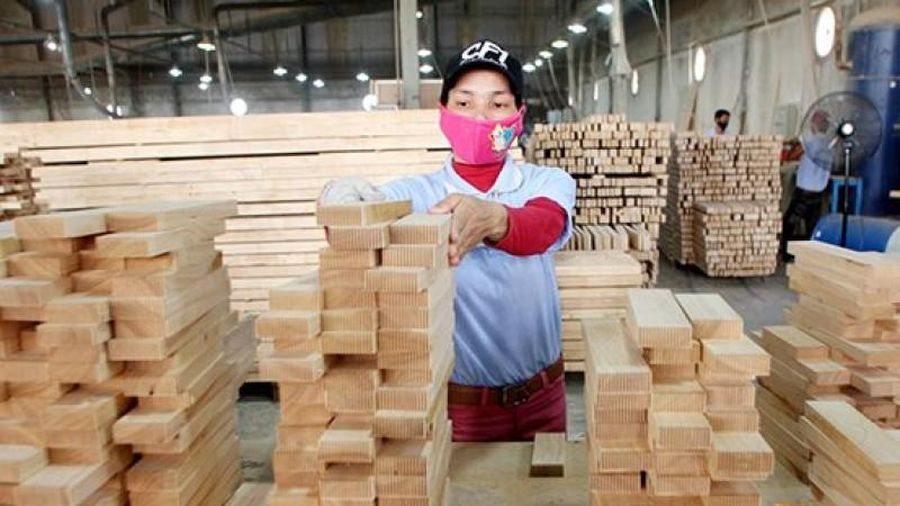 FDI ngành gỗ: Giám sát chặt để chống gian lận thương mại