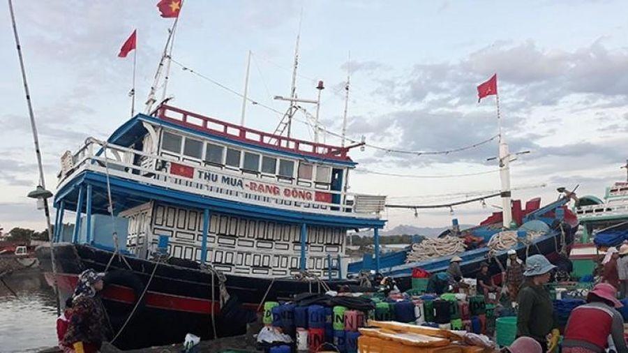Hoàn thiện cơ chế, chính sách khuyến khích ngư dân bám biển