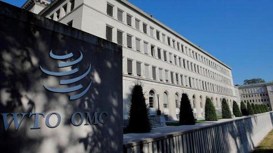Căng thẳng thương mại EU – Indonesia lên bàn nóng WTO