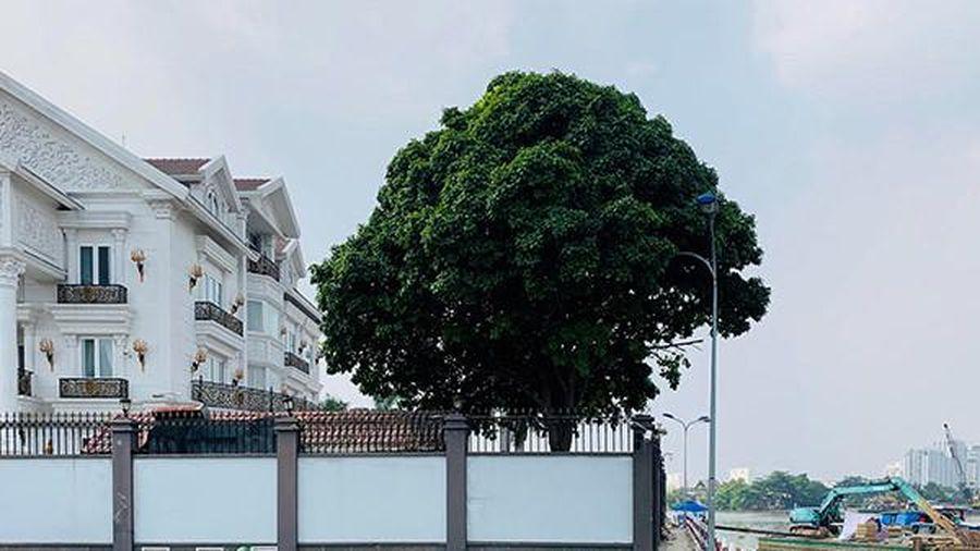 Lấn chiếm bờ sông Sài Gòn làm của riêng: Siêu biệt thự, bến du thuyền 'nuốt' không gian chung