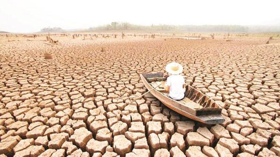 11.000 nhà khoa học cảnh báo về biến đổi khí hậu
