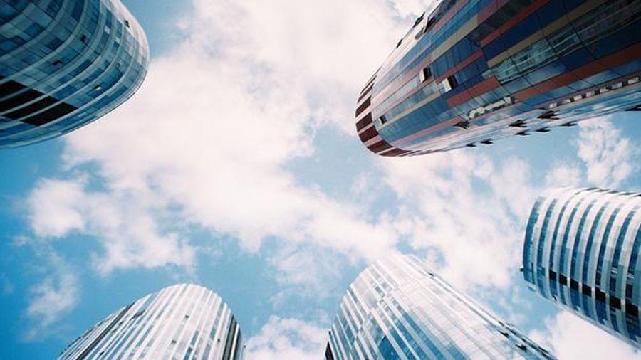 OECD cảnh báo kinh tế toàn cầu sẽ mắc kẹt trong sự suy giảm