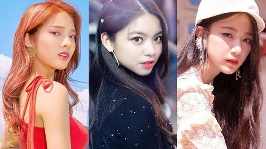 Những idol Kpop đến từ Đài Loan