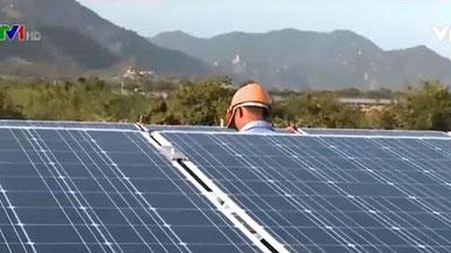 Sẽ đấu thầu xác định giá bán điện Mặt trời