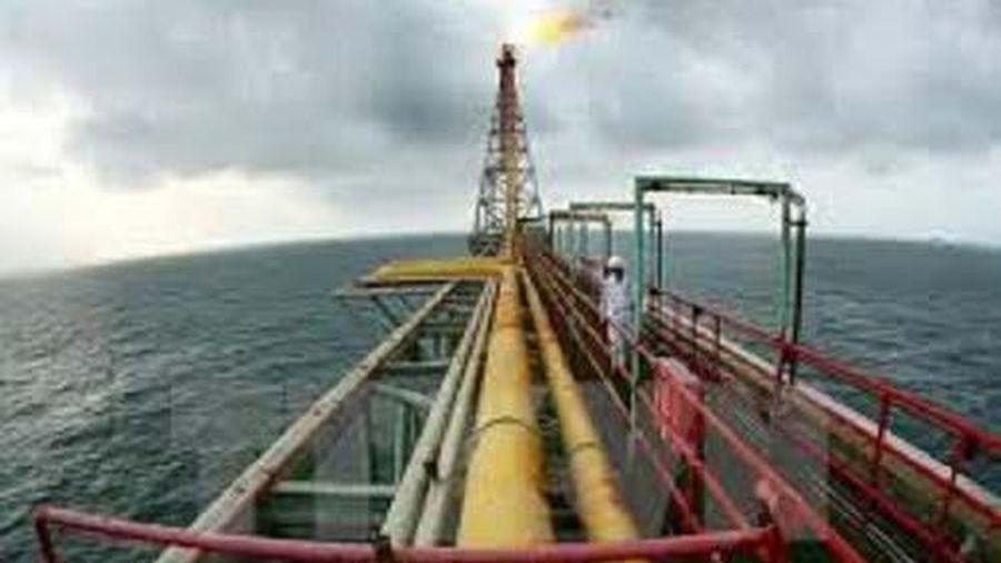 Giá xăng, dầu (23/11): Quay đầu giảm