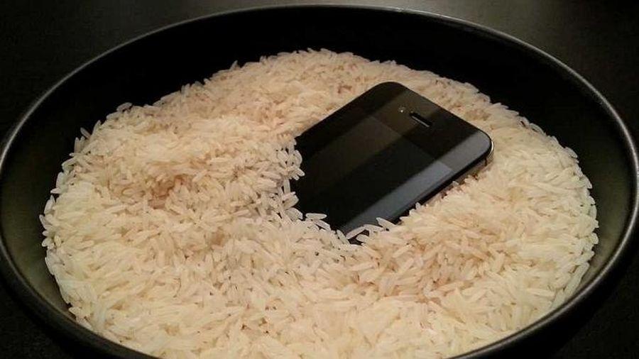 Mỹ - Hàn đạt được thỏa thuận về hạn ngạch nhập khẩu gạo từ ngày 1/1/2020