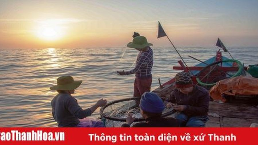 Một chuyến câu biển