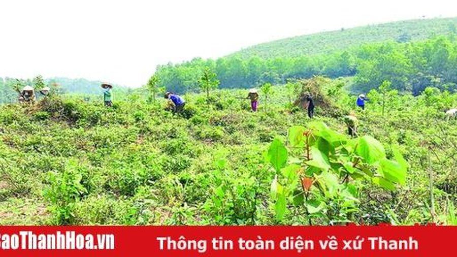 Phục hồi và quản lý bền vững rừng phòng hộ tỉnh Thanh Hóa