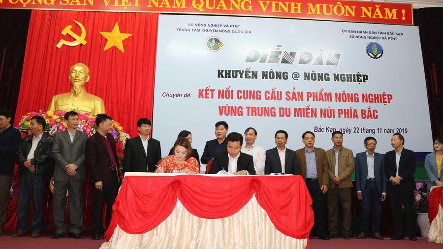 Ký hợp đồng hợp tác, Big C tạo sinh kế cho hàng trăm nông dân đồng bào thiểu số tỉnh Bắc Kạn