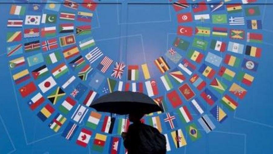 OECD dự báo tăng trưởng kinh tế toàn cầu năm 2020 là 2,9%