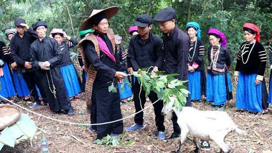 Tái hiện Lễ cúng thần rừng của dân tộc Pu Péo (Hà Giang)