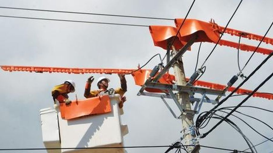 Ứng dụng công nghệ sửa chữa điện hotline: PC Phú Yên giảm 50% thời gian mất điện