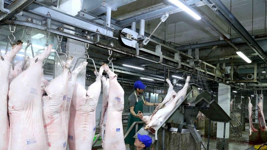 Đảm bảo nguồn cung, bình ổn giá thịt lợn những tháng cuối năm