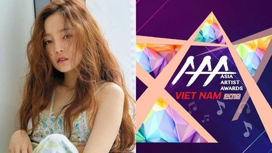 Độc quyền: BTC Asia Artist Awards 2019 nói gì về việc các nghệ sĩ Hàn đến Việt Nam sau khi Goo Hara tự tử?
