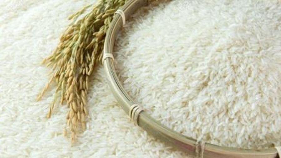 Đảo ngược ngôi vị TOP 3 thị trường xuất khẩu lớn của gạo Việt