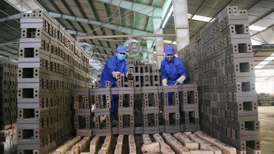 Lào Cai: 356 doanh nghiệp thành lập mới