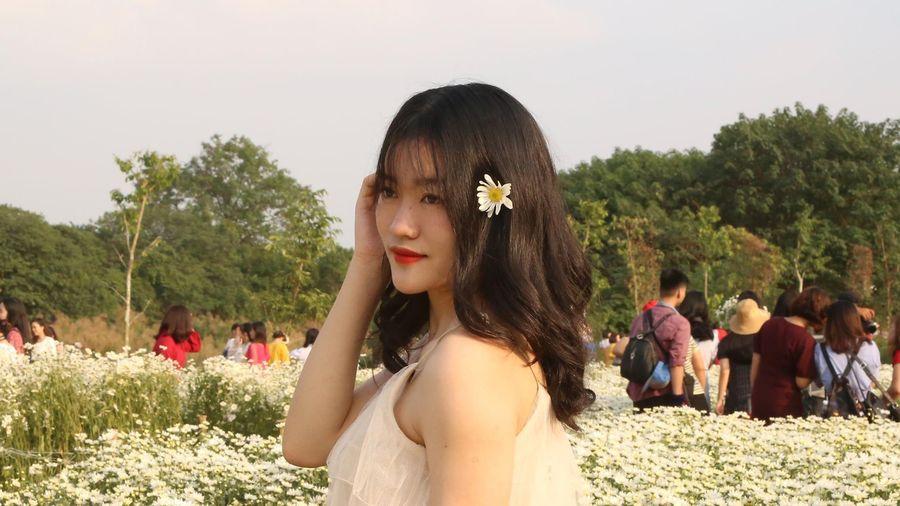 Chen lấn chụp ảnh cúc họa mi dịp cuối tuần