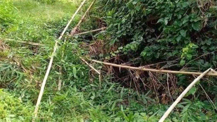 Phát hiện thi thể không nguyên vẹn nằm sâu trong bụi rậm