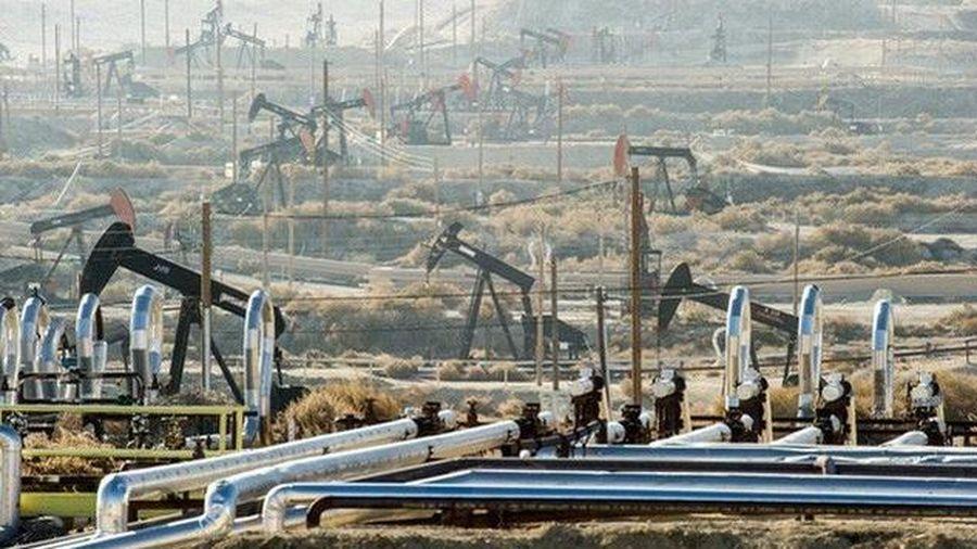 Giá xăng dầu hôm nay 25/11 tăng nhẹ