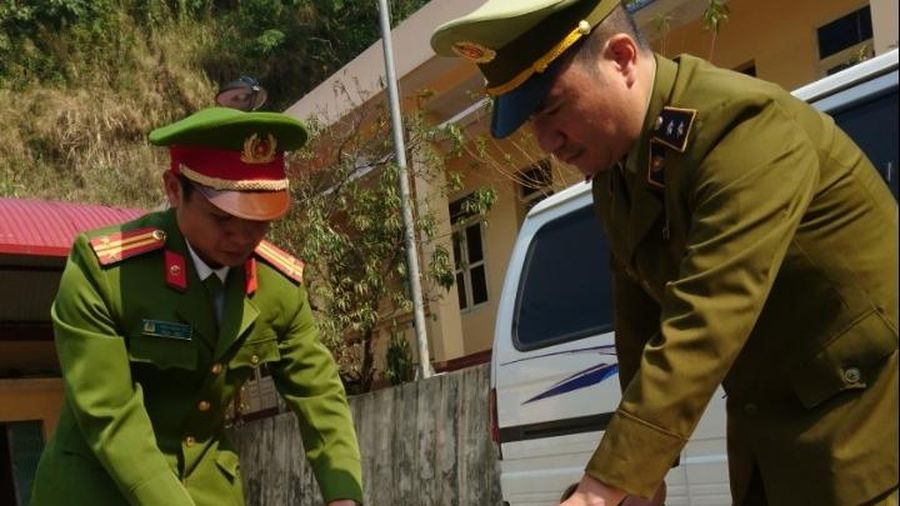 Lạng Sơn: Từ lời khai của lái xe, bắt chủ lô pháo gần 50kg
