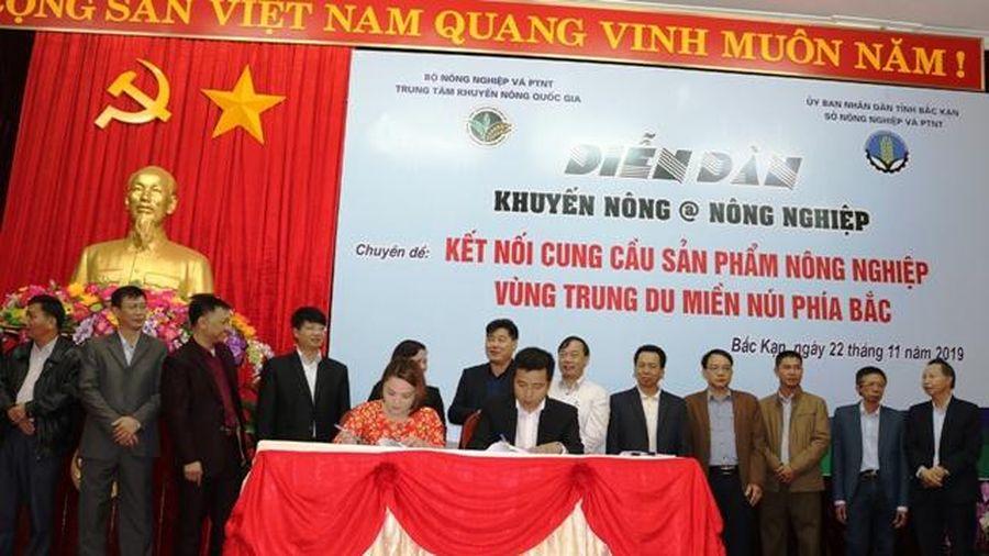 Big C ký kết hợp đồng tạo sinh kế cho 200 hộ nông dân thiểu số tỉnh Bắc Kạn