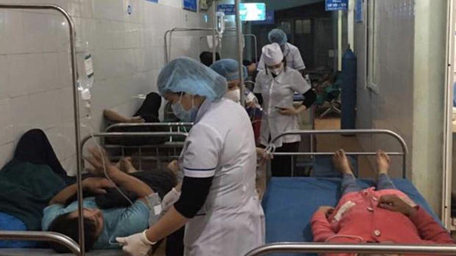 Hà Giang: 11 người ngộ độc nghi do ăn nấm