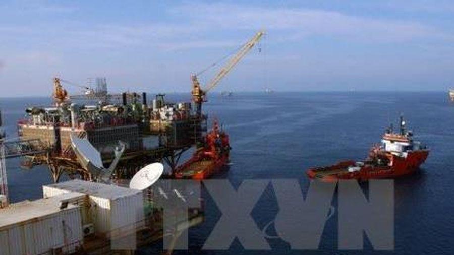 Giá dầu châu Á tăng do kỳ vọng mới vào đàm phán thương mại Mỹ - Trung
