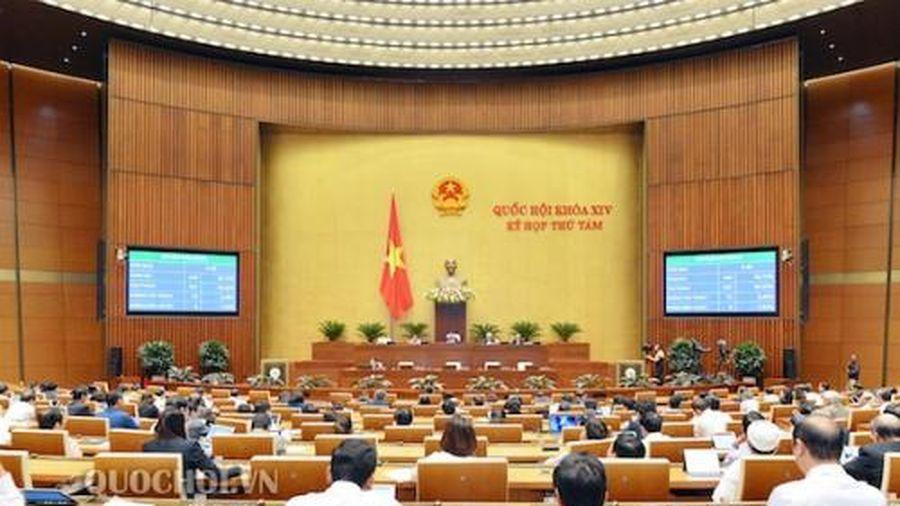 Hôm nay, Quốc hội bỏ phiếu kín bầu Chủ nhiệm Ủy ban Pháp luật
