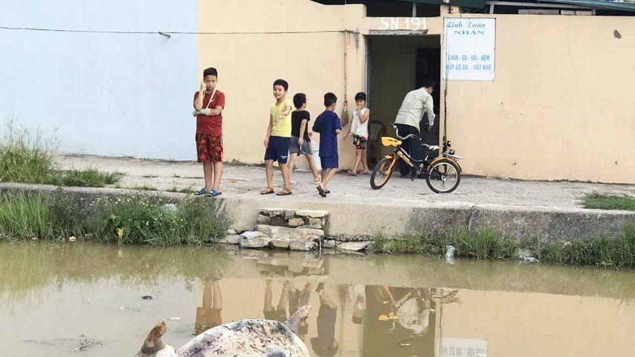 Kinh hoàng Kênh dẫn nước sinh hoạt cấp cho người dân Thanh Hóa bị ô nhiễm nghiêm trọng