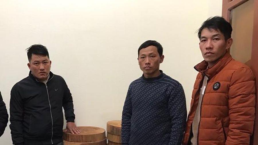 Bắt giam ba lâm tặc chặt hạ 2 cây gỗ nghiến tại Vườn quốc gia Ba Bể
