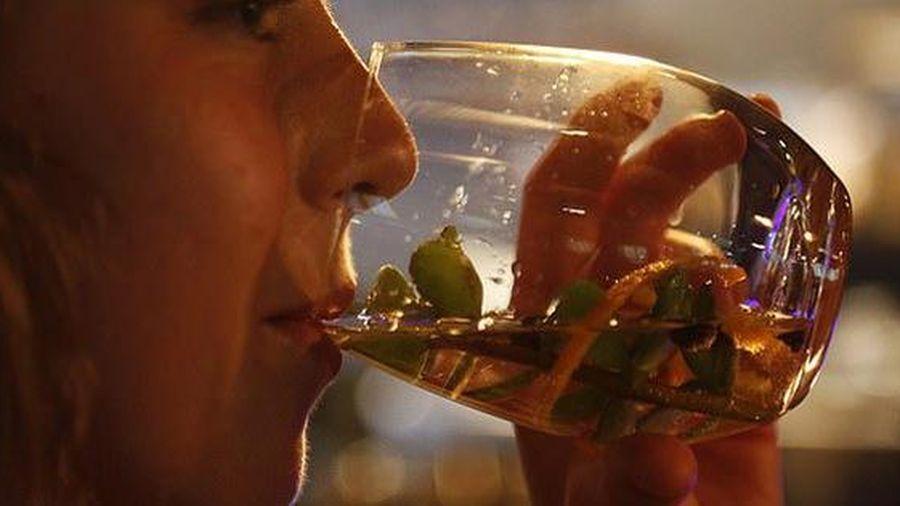 Độc đáo với loại rượu làm từ phân voi Châu Phi