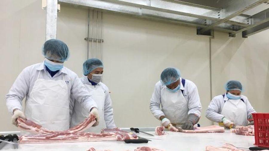 Hà Nội sẽ không thiếu thịt lợn trầm trọng vào dịp Tết như các địa phương