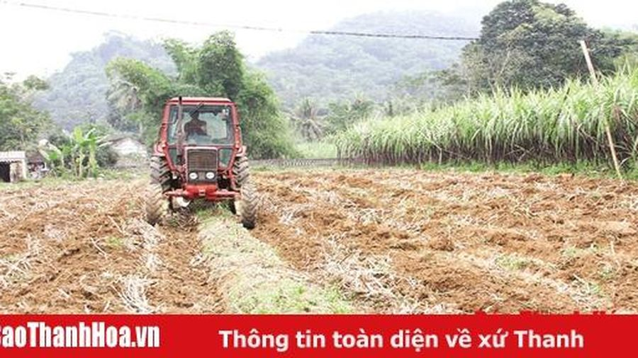 Kết quả áp dụng cơ giới hóa vào sản xuất nông nghiệp