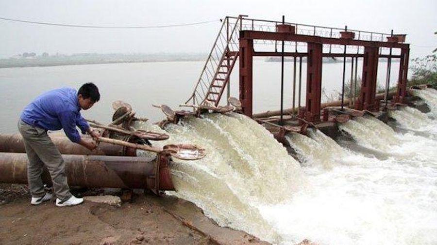 Từ 0 giờ ngày 20/1/2020, bắt đầu lấy nước gieo cấy vụ Đông Xuân 2019 - 2020