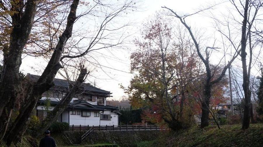 Khám phá ngôi làng cổ thơ mộng dưới chân núi Phú Sĩ