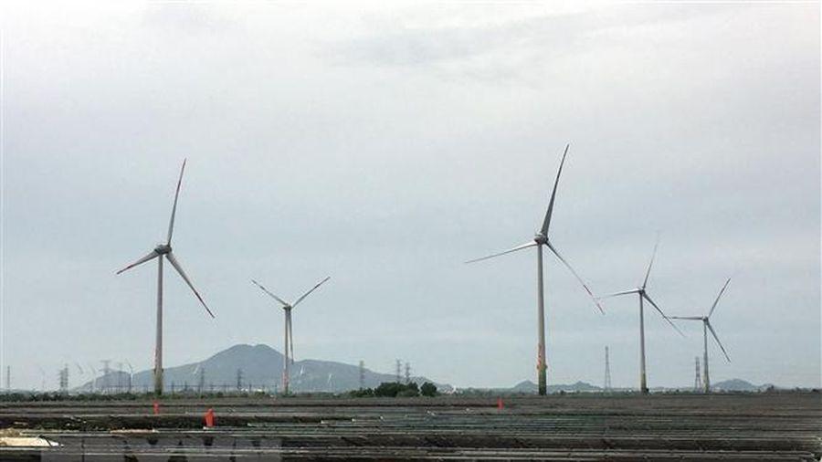 Năng lượng tái tạo tại Việt Nam - từ chính sách đến thực tiễn
