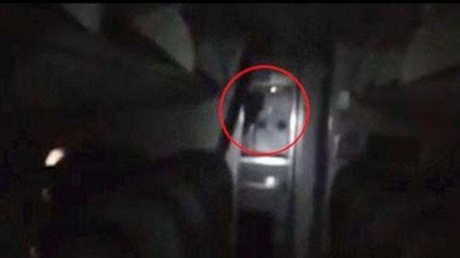 CLIP: Hãi hùng phát hiện ra 'quỷ lông đen' trên máy bay