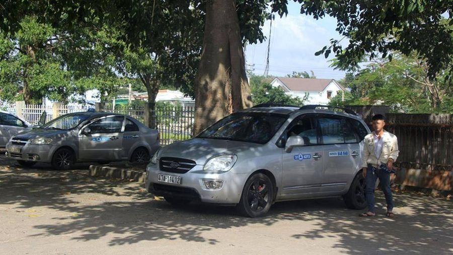 Taxi Tây Nguyên ngang nhiên hoạt động 'chui'