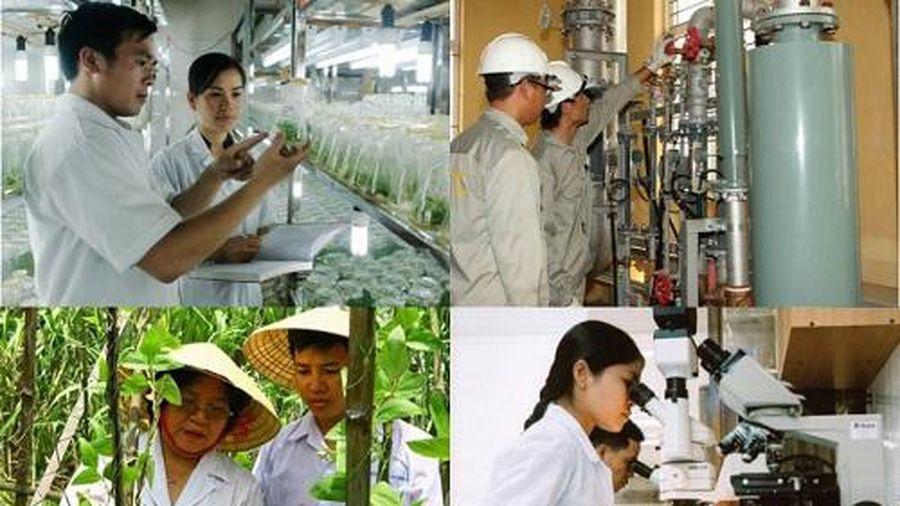 Đề xuất bổ sung 4 ngành, nghề ưu đãi đầu tư
