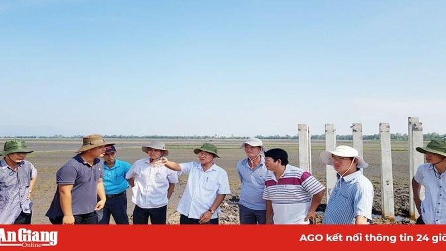 Tri Tôn đẩy nhanh tiến độ xây dựng cầu nông thôn