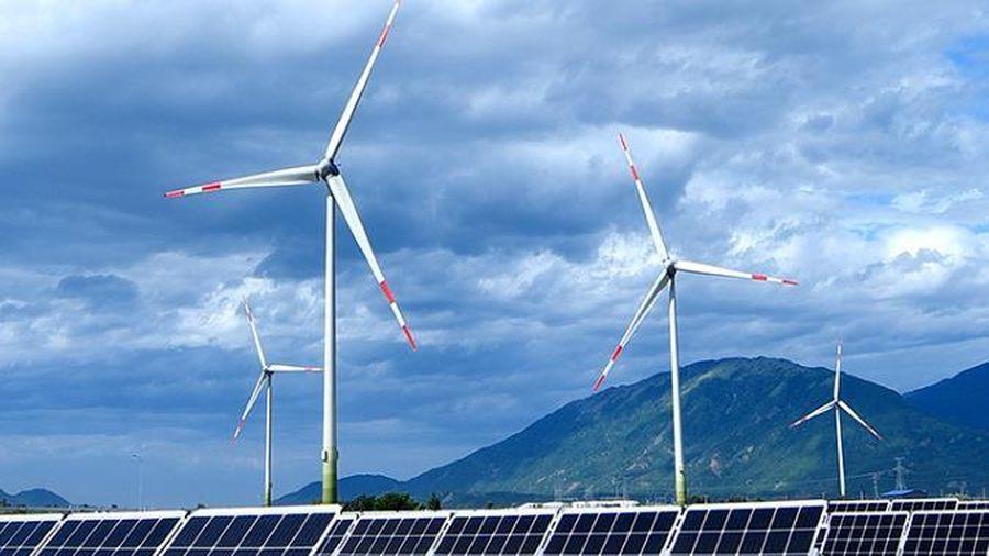 Phát điện 16 trụ điện gió lớn nhất Việt Nam