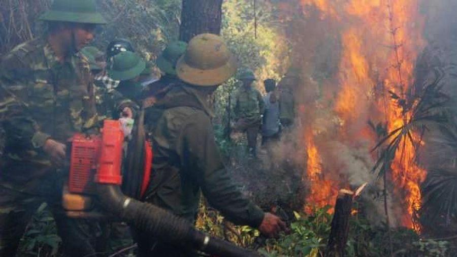 Người đốt rác gây cháy rừng kinh hoàng ở Hà Tĩnh bị phạt 7 năm tù