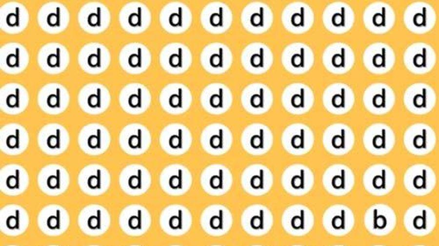 CLIP: Những câu đố vui kiểm tra độ tinh mắt của bạn