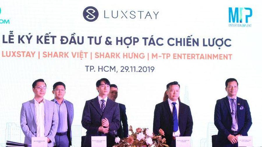 Từ 'sếp' thành 'Shark', Sơn Tùng M-TP tiết lộ lí do đầu tư vào Luxstay