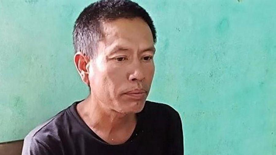 Hà Tĩnh: Đốt rác gây cháy rừng lĩnh án 7 năm tù