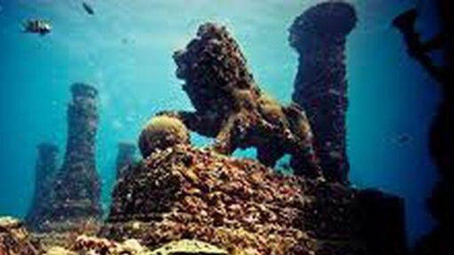 Nghĩa trang dưới lòng đại dương - nơi an nghỉ cuối cùng dành cho những người yêu biển